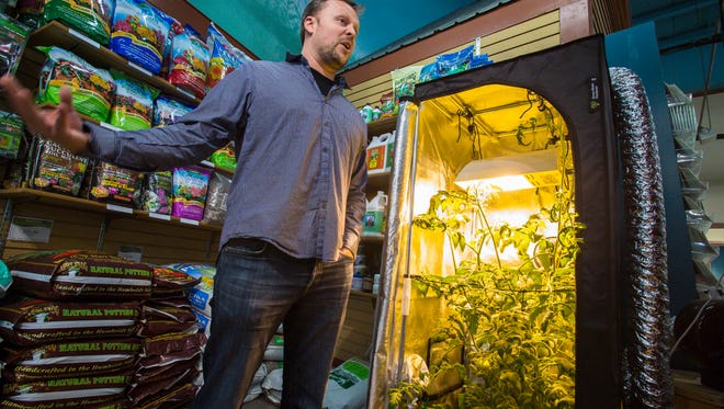Dylan Raap of Green State Gardener, which sells cannabis growing supplies, seen here at Gardener's Supply in Burlington on Monday, May 17, 2016.