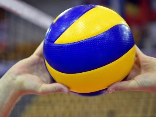 -webartsportsvolleyball2.jpg_20140511.jpg