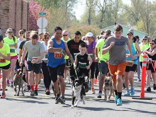 Runners and their four-legged companions take off from the starting line during the annual K9 Run, hosted by Where to Start Fitness and the Stayton Police, on Saturday, April 2, 2016, in Stayton.