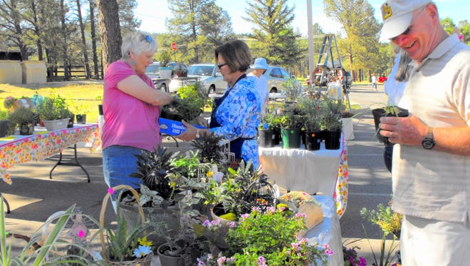 Lincoln County Gardening Club's plant sale begins June 10.