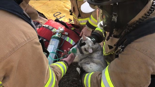 Fond du Lac firefighters are giving a cat oxygen after rescuing it from a house fire Monday.