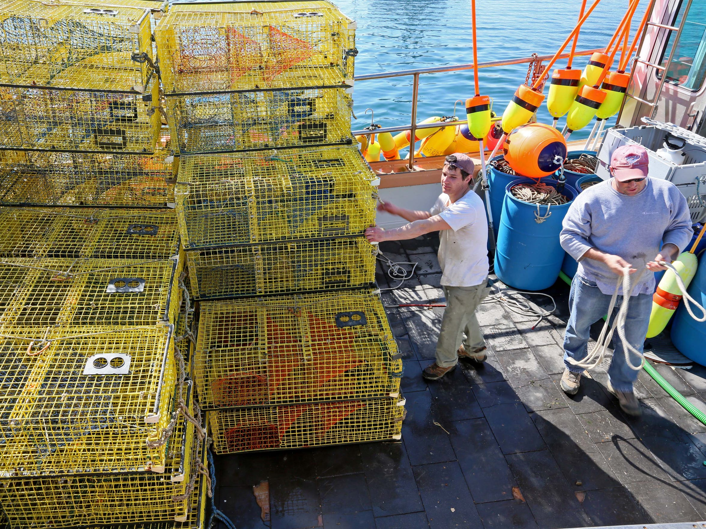 29 year-old Nick Frontiero helps unload a lobster boat