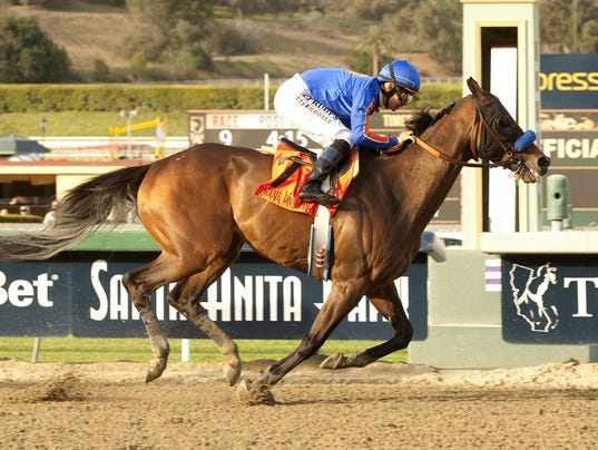 horseracing0308
