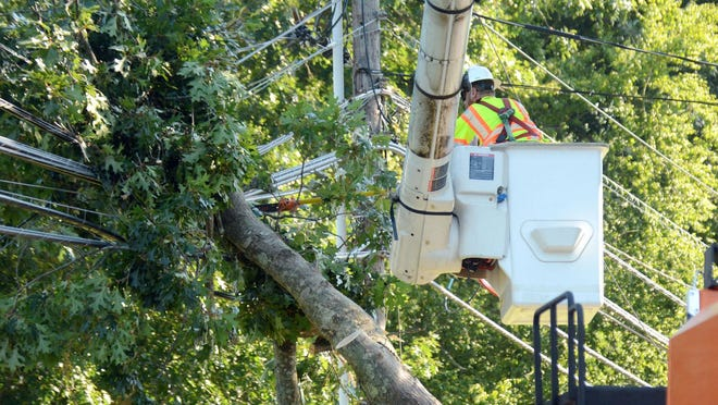 An Asplundh Tree Expert employee, who did not want to give his name, cuts a large limb resting on power and cable wires Wednesday caused by Tuesday's high winds in Norwich. A portion of Harland Road near Hunter's Road was closed during the tree removal. The area did not have power. See videos and more photos at NorwichBulletin.com