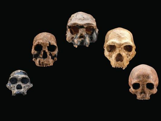 635978080053981546-HO-skull-casts-front-2-.jpg