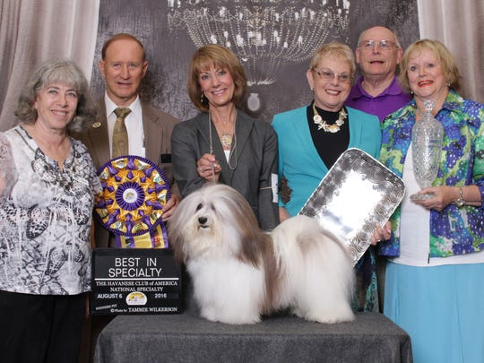 """Tracey Rives, third from left, stands with her Havanese dog, Manny, at the Havanese Club of  America National Specialty on Aug. 6, 2016, in Orlando, Fla. Manny won """"Best of Breed."""""""
