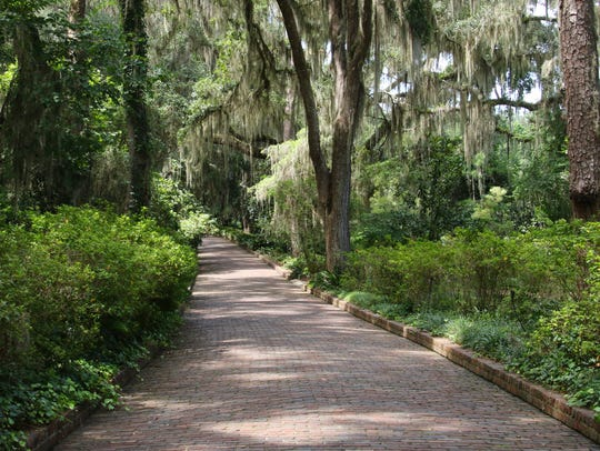 Brick walkway through Maclay Gardens.