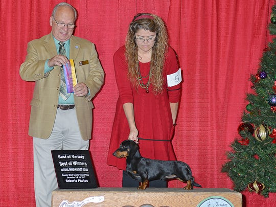 Michelle Kutzler with Meatloaf, earning ribbons at