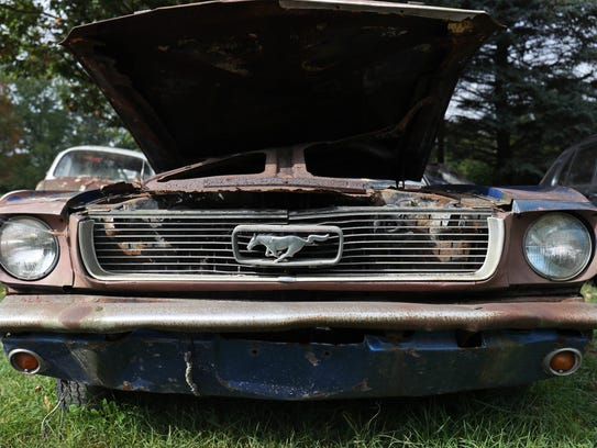 An old Ford Mustang is one of the 200 cars that occupy