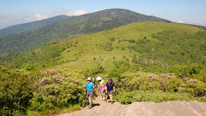 The Appalachian Trail, (seen here in the Roan Highlands area) which runs through the Blue Ridge Mountains, is now 2,189 miles long.