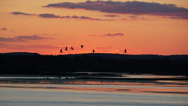 Ward Burgess snapped this photo of geese flying over Lake Wausau in 2014.
