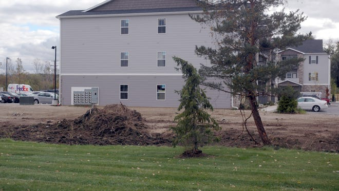 East Lansing city officials asked The Rocks at Chandler Crossings staff Wednesday to stop clearing trees and brush from an easement which belongs to the city. The complex intends to build a pathway between Chandler Road and the East Lansing Soccer Complex.