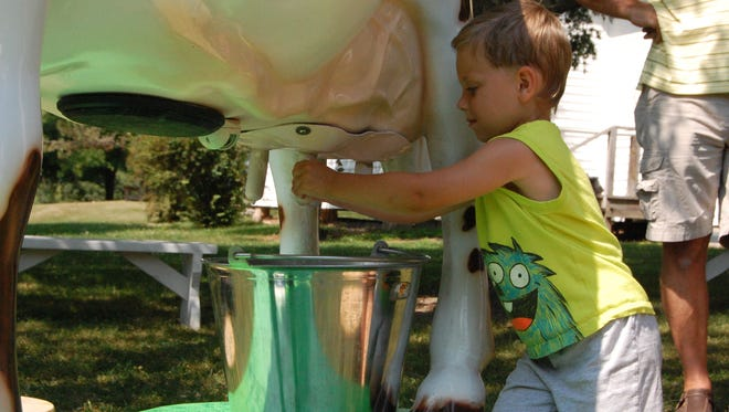 """""""Addie, the milking cow,"""" will teach how milk goes from udder to glass at Manitowoc County Historical Society's Curiosity Fair July 20."""