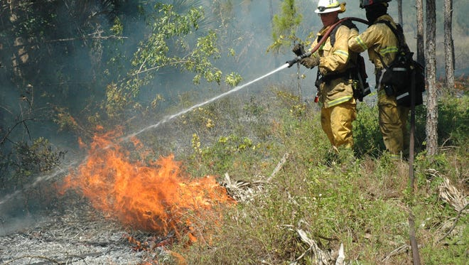 Firefighters put out a wildfire at Bluefield Preserve in western St. Lucie County in this 2014 file photo.