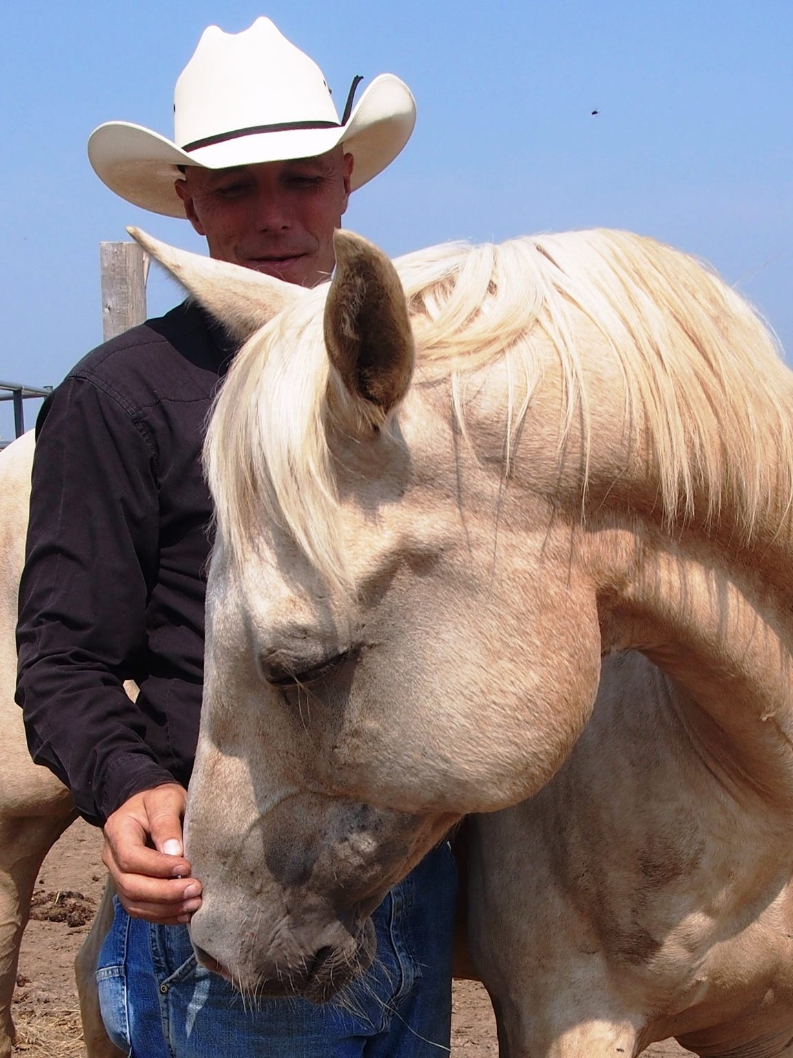 Pastor Dave Ward poses with Leo, a 24-year-old palomino horse, one of several hard-luck cases that he has trained and tamed on Sweet Haven Ranch in Chilton.