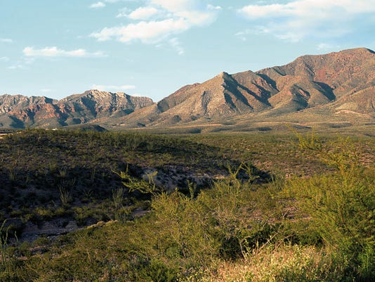 The Franklin Mountains and surrounding area have become far greener than in past years because of abundant rainfall.