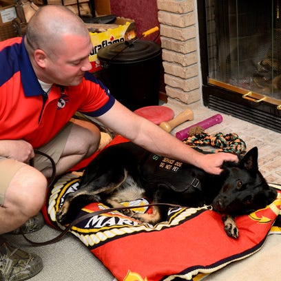 Johnnie Trout pets his service dog Raven Friday as