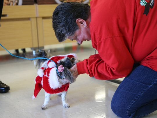 Pat Hines, president of Concho Valley PAWS, greets Tzuki and her owner Jenie Wilson on Dec. 13 at Petco.