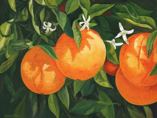 Blooming Oranges