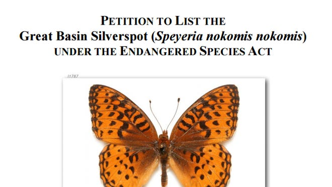 WildEarth Guardians' petition for the U.S. Fish and Wildlife Service to review the Great Basin silverspot butterfly.