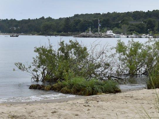 Shoreline near the Baileys Harbor town marina along