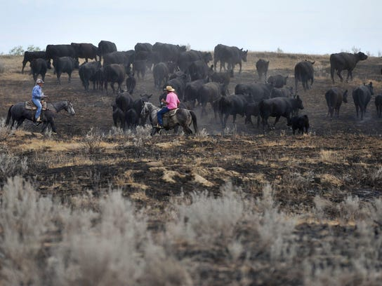 The $2.5 million in funding to help ranchers and farmers