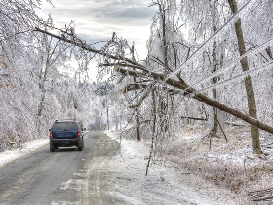 Car drives under dangerous trees weighed down by ice
