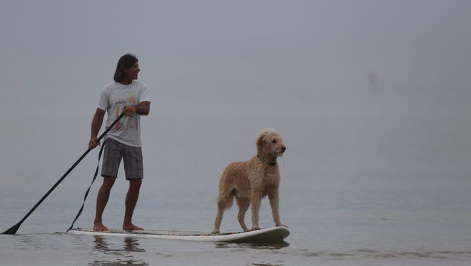 Tosh the golden doodle gets a ride on a paddleboard with his owner, Shawn Wilcox off of Fort Myers Beach in early December.  Dogs and owners enjoyed the water during the hottest December in Southwest Florida