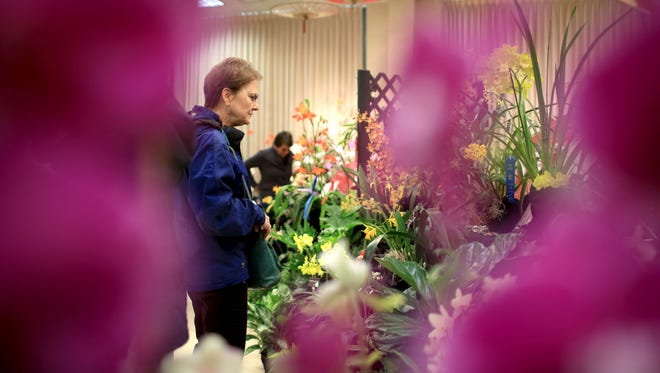 Attendees visit the WNC Orchid Society's annual orchid show last year at the N.C. Arboretum. The 18th annual judged show is Friday-Sunday, April 15-17, at the Arboretum in Asheville.