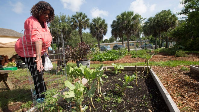 Pine Manor resident, Jeanette William shows off her community garden plot Tuesday.  She has been using the plot for two years.