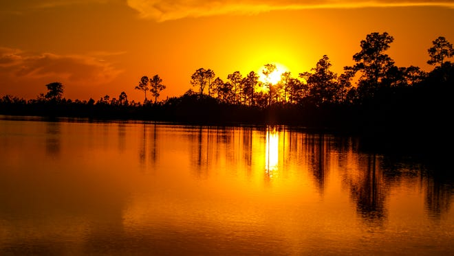 Pine Glades Lake, Everglades National Park.