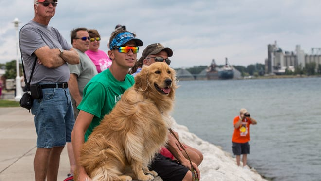 Preston Roseman, of Massillon, Ohio, watches passing boats with his dog, Bailey, during time trials for the International Offshore Powerboat Races Saturday, August 13, 2016 on the St. Clair River in Port Huron.