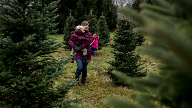 Tareeshia Sapp, of Clinton Township, carries her daughter Emilia, 2, while looking for a Christmas tree Saturday, Nov. 26, 2016 at Dunsmore Blue Spruce Tree Farm in Smiths Creek.