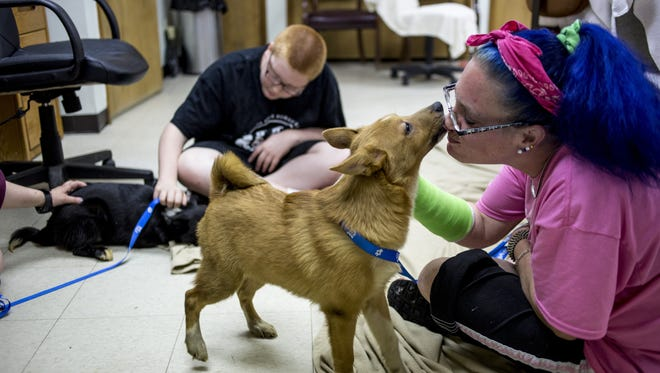 Volunteer Joanie Hickson, of Clyde Township, gets a kiss from a puppy at the Blue Water Area Humane Society.