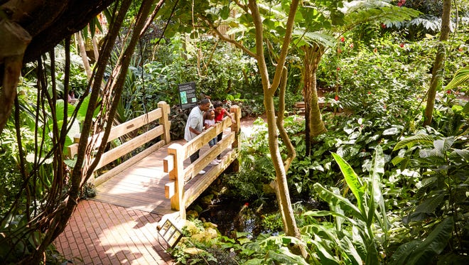 Olbrich Botanical Gardens in Madison features a conservatory with tropical plants and free-flying birds.