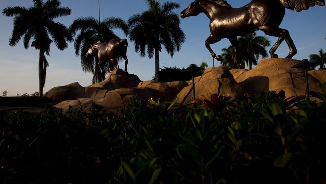 Two of the three final bronze horse sculptures, which had been in storage for nearly 25 years, stand at the entrance of Lely Resort at Collier Boulevard and Grand Lely Drive early Thursday August 3, 2017 in East Naples. The three horses had been in storage for nearly 25 years.