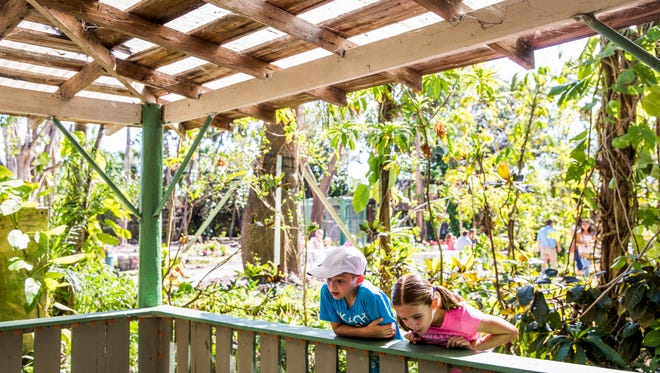 Siblings Natalie, 10, and Nathan Pagel, 8, of Estero visit the Everglades Wonder Gardens for its reopening since Hurricane Irma on Sunday, Nov. 5, 2017.