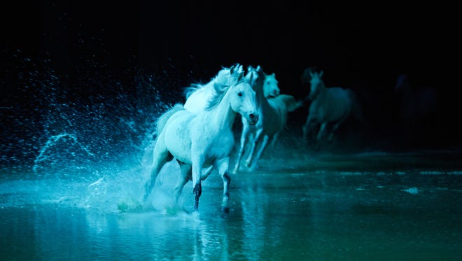 """Cavalia's """"Odysseo"""" includes an artificial lake for its purebred show horses to splash through."""