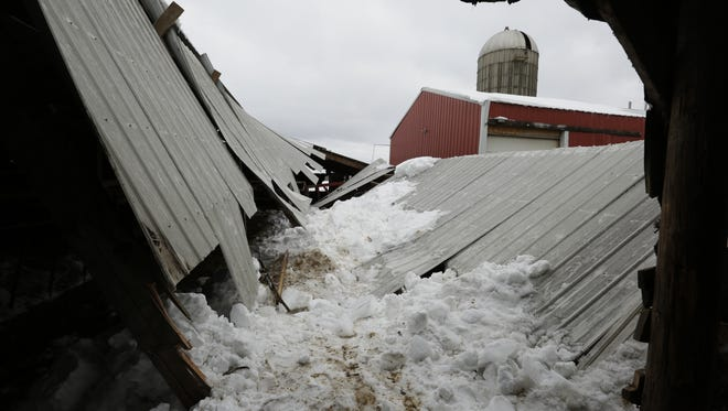 A barn belonging to Jennifer and John Yost III of Winneconne, were about to milk when a part of their barn roof collapsed onto some of their cows.