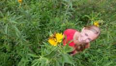 Iowa farmers play crucial role in monarch butterflies' survival