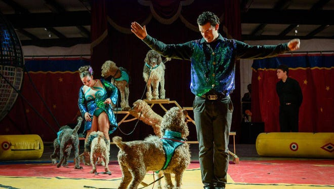 The 2020 edition of the Great Benjamins Circus will be roaringinto town to Las Cruces from 4:30 to 7 p.m. on Friday, Feb.21, andSaturday, Feb. 22, at the Doña Ana County Fairgrounds,12125 Robert Larson Blvd.