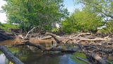 The Pecatonica River runs through Darlington in Lafayette County and is a great spot for a kayaking and biking trip.