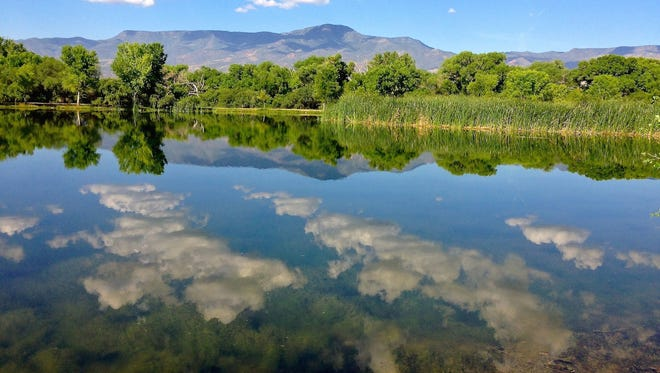 Three lagoons are one of the centerpiece attractions of Dead Horse Ranch State Park in Cottonwood.