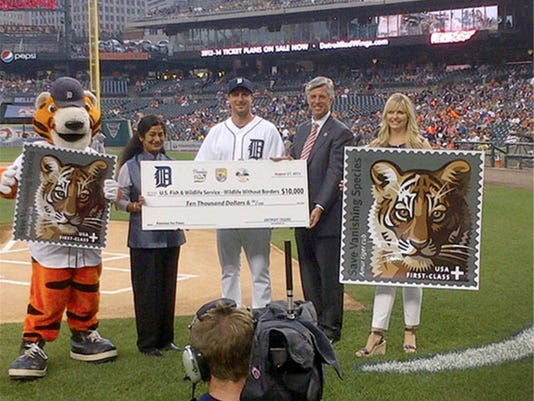 A win for Tigers