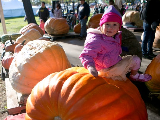 Large pumpkins are weighed at a past Nekoosa Giant Pumpkin Fest.