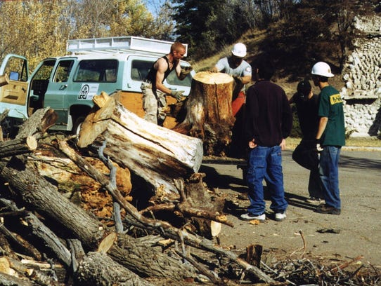 Conservation corps and youth evaluation workers clear