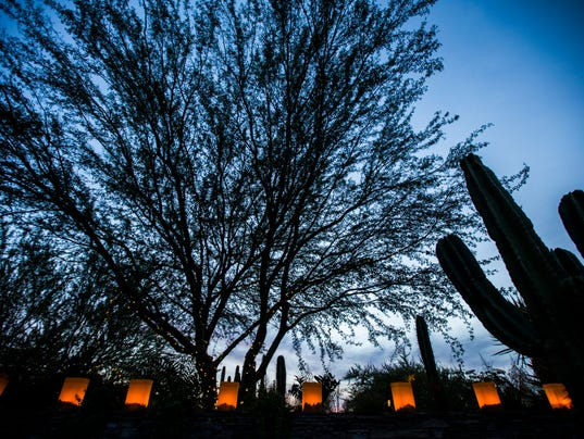 Las Noches de Las Luminarias at the Desert Botanical Garden