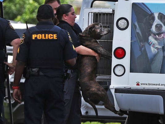 AP FLORIDA FATAL DOG BITE A USA FL