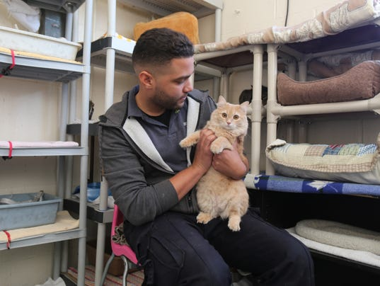 Mount Vernon Animal Shelter