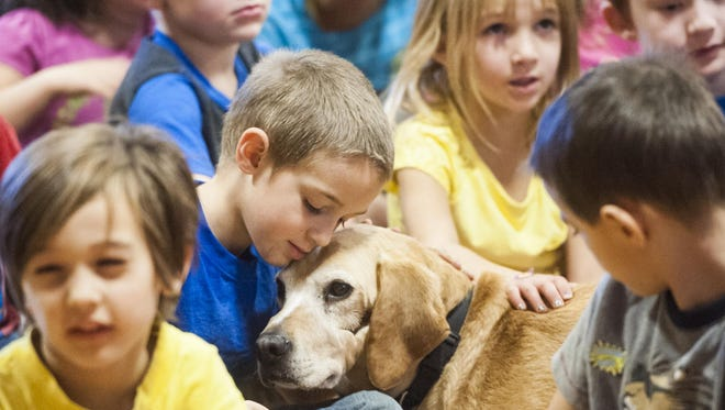 Roosevelt Elementary kindergarten student Orrin Lundby rests his head on Marshall the Miracle Dog as he listens to the story of how Marshall survived a hoarding situation and died on the Humane Society's operating table but then became a licensed therapy dog Tuesday.